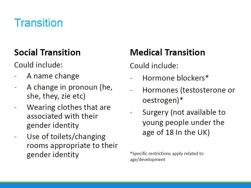Sex Education Forum - transition